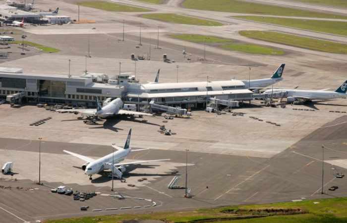 Rauschgifthund legt Flughafen lahm - und wird erschossen