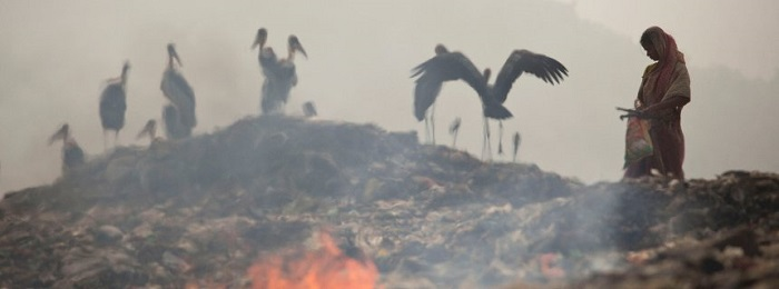 Klimasünder Indien: Kohle gegen Kohle