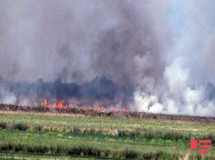Dimite la ministra de Interior de Portugal tras los incendios