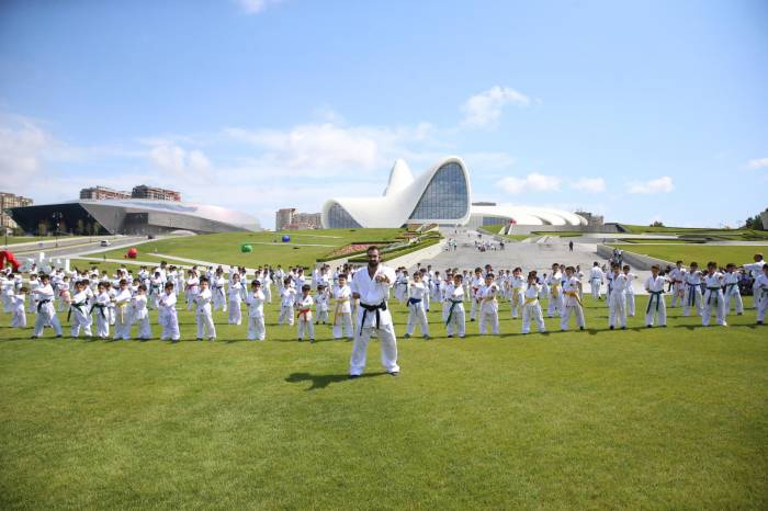 Heydər Əliyev Mərkəzinin parkında karate dərsi keçirilib - Fotolar