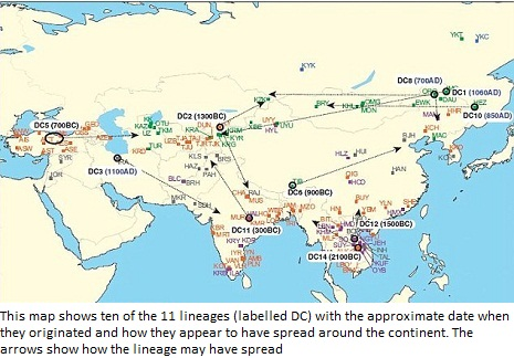 Map Of Asia 800.The 11 Fathers Of Asia 800 Million Modern Men Are Descended From A