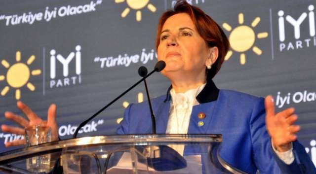 New opposition party established in Turkey