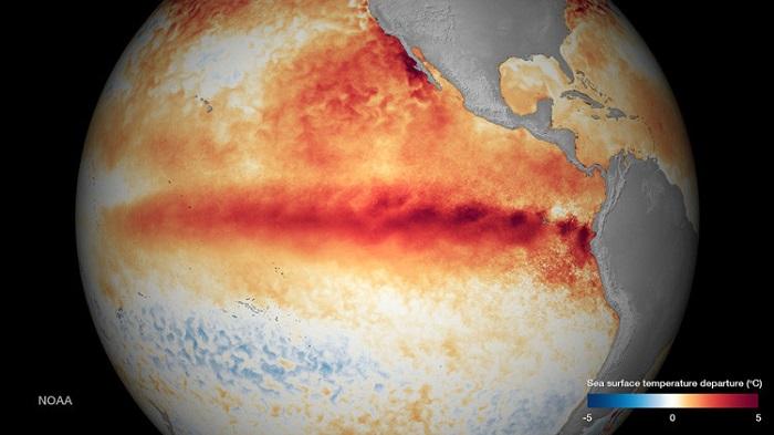 Calor sin tregua: Se registran los 12 meses consecutivos más cálidos de la historia