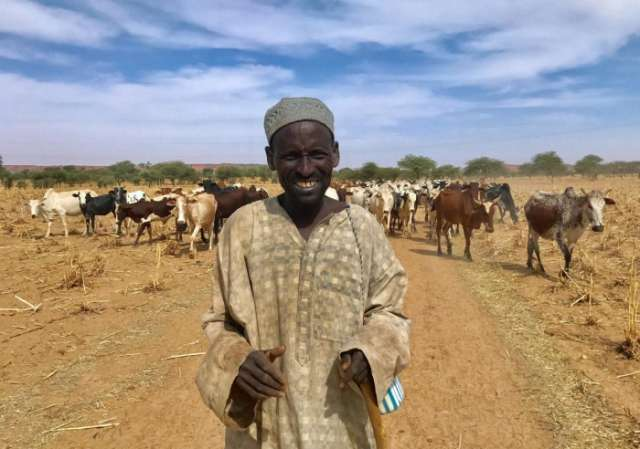 Why Niger and Mali's cattle herders turned to jihad