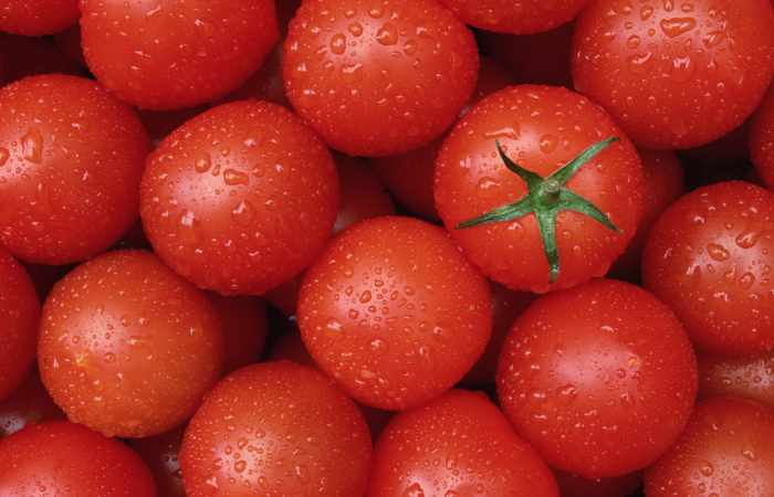 Azərbaycan pomidoru Rusiyaya buraxılmadı