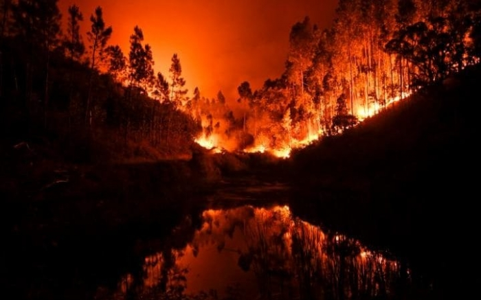 Portugal on high alert as firefighters battle blaze