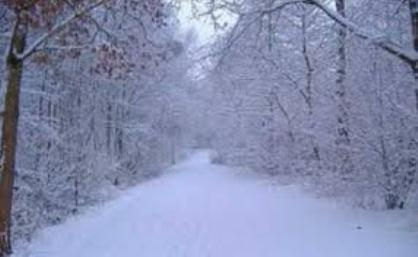 Qaxa yarım metr qar yağıb - Nazirlik