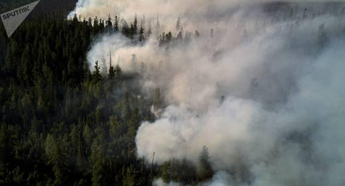 Se reduce en 40% el número de los incendios forestales en el Lejano Oriente ruso