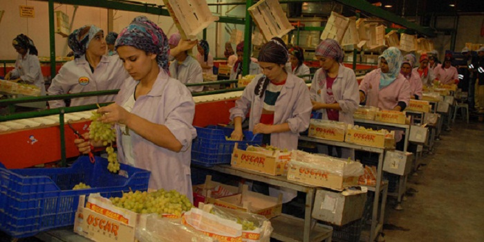 Russia to strengthen control over re-export of Turkish products through Azerbaijan