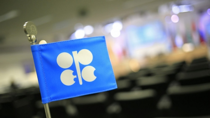 Azerbaijan, Saudi Arabia discuss ways of expanding energy cooperation