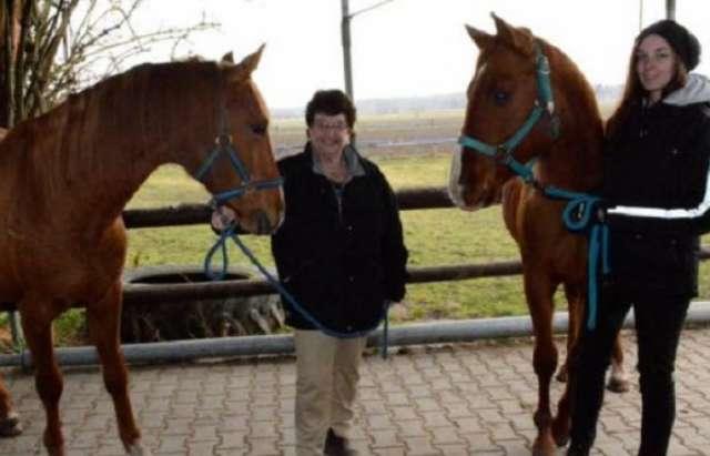 Ginsheimer Pferdezüchterin Verena Scholian will die Karabaghen erhalten