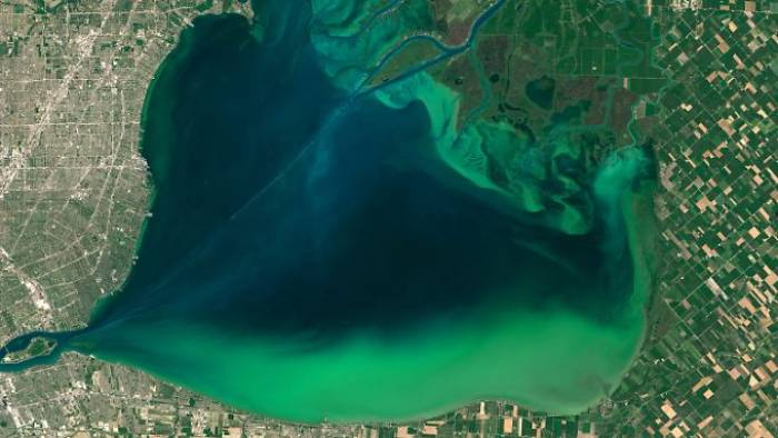 Klimawandel beeinflusst Farbe