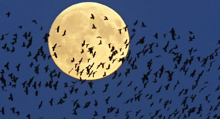 México será testigo de una Superluna de sangre azul