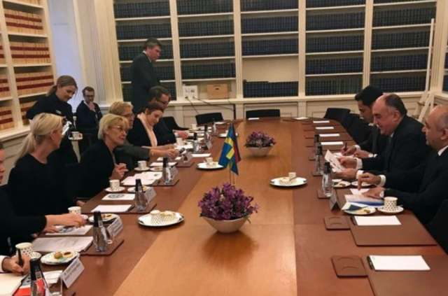 Azerbaijan, Sweden discuss how to develop cooperation between parliaments