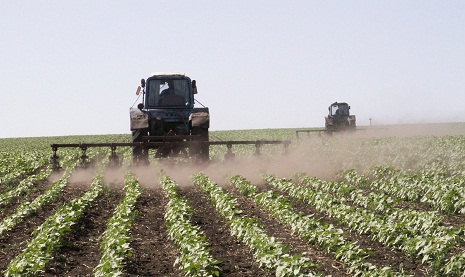 70.6% of autumn sown area plowed in Azerbaijan