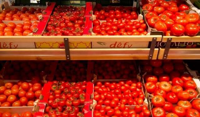 Russia agrees to import 50,000 tons of Turkish tomatoes