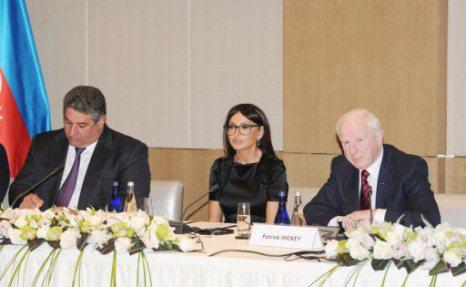Mehriban Əliyeva toplantı keçirdi - FOTOLAR