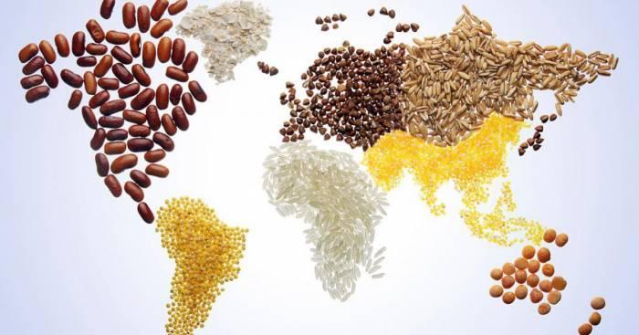 Bakou accueille une réunion consacrée à la Journée mondiale de l'alimentation