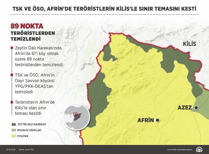 """""""Zeytun budağı""""nın bir ayı - Türkiyə nə əldə etdi?"""